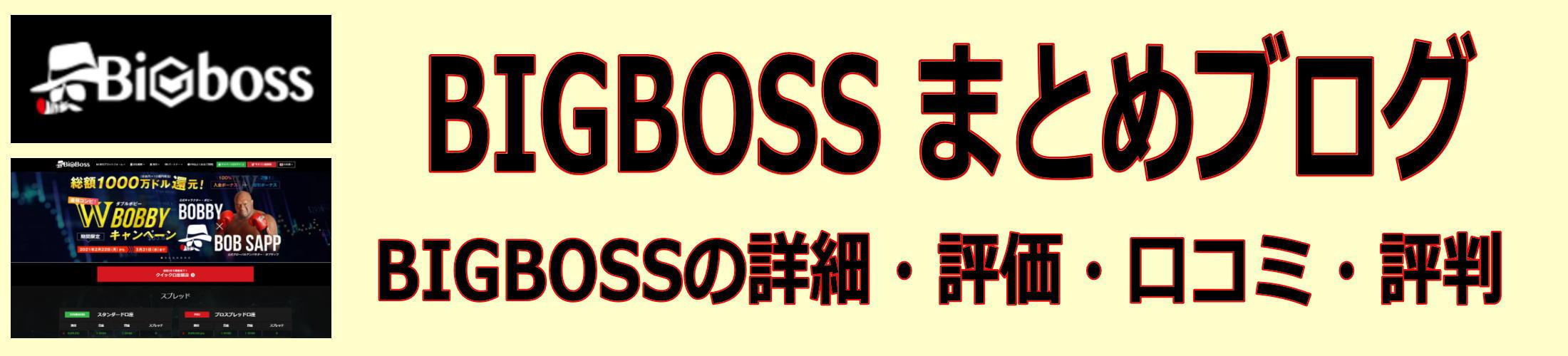 BIGBOSSの口コミ・評判・詳細・概要・レビュー・比較